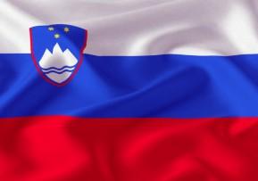 Slovenska zastava, 300x150,