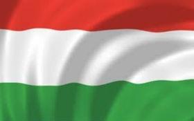 Mađarska zastava, 300x150