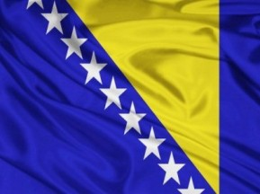Zastava BiH, 300x150